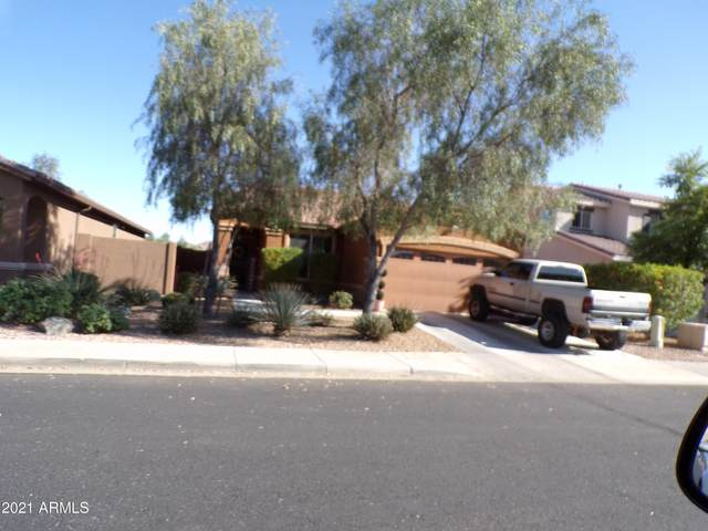 18105 W Ivy Lane, Surprise, AZ 85388 (MLS #6233566) :: Lucido Agency