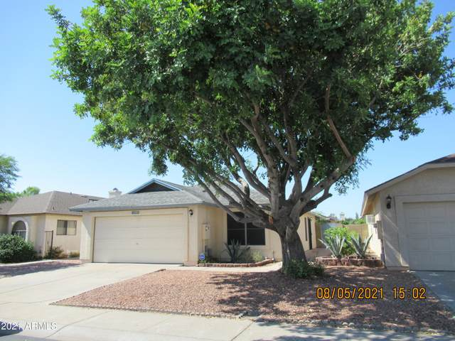 6420 W Golden Lane, Glendale, AZ 85302 (MLS #6233616) :: Arizona 1 Real Estate Team