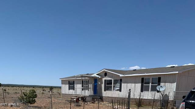 0 No Name, Seligman, AZ 86337 (MLS #6233678) :: Dave Fernandez Team | HomeSmart