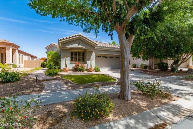 6950 W Rose Garden Lane, Glendale, AZ 85308 (MLS #6233679) :: The Ethridge Team