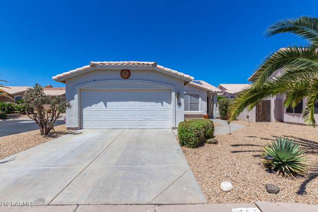 11534 W Tortoise Court, Surprise, AZ 85378 (MLS #6233690) :: D & R Realty LLC