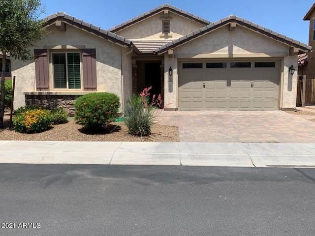 134 E Prescott Drive, Chandler, AZ 85249 (MLS #6233703) :: John Hogen | Realty ONE Group