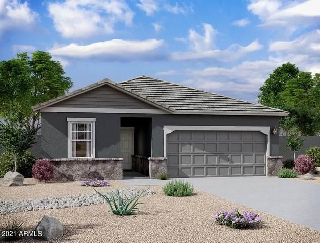 35323 W Santa Clara Avenue, Maricopa, AZ 85138 (MLS #6233713) :: CANAM Realty Group