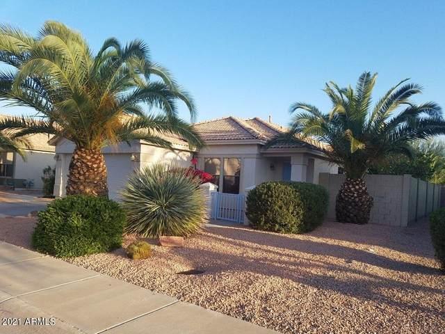 918 E Pedro Road, Phoenix, AZ 85042 (MLS #6233733) :: John Hogen | Realty ONE Group
