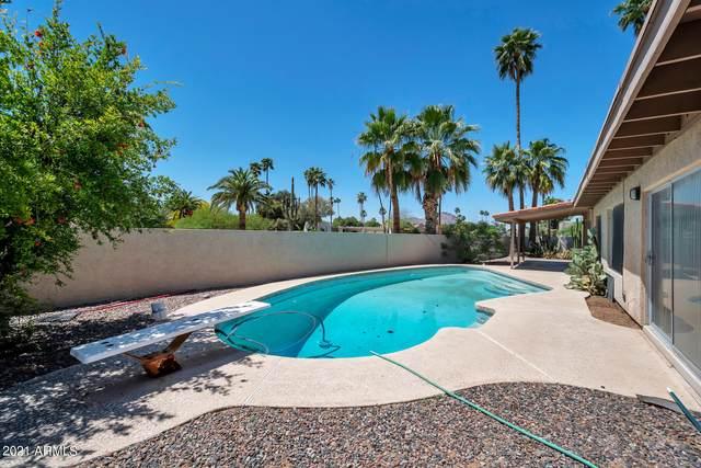7105 N Via De Alegria, Scottsdale, AZ 85258 (MLS #6233757) :: D & R Realty LLC