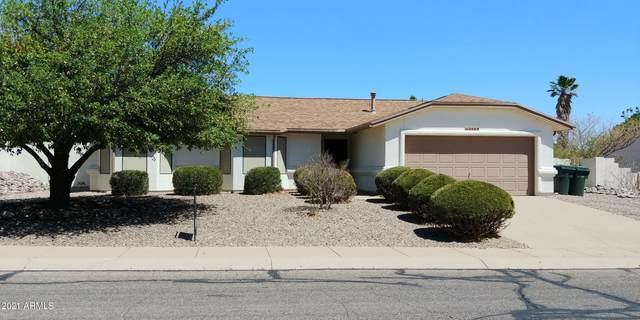 2589 Southridge Street, Sierra Vista, AZ 85650 (#6233789) :: Long Realty Company