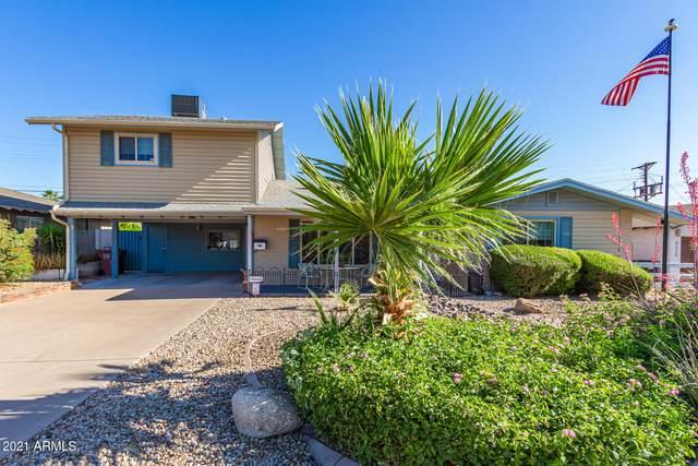 6520 E Oak Street, Scottsdale, AZ 85257 (MLS #6233805) :: The Laughton Team