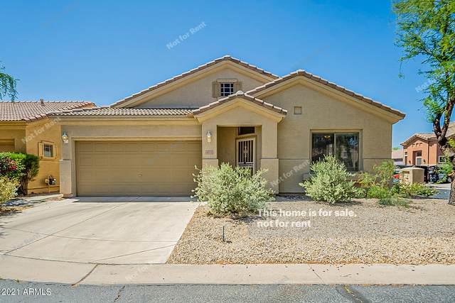 4111 E Barwick Drive, Cave Creek, AZ 85331 (MLS #6233815) :: Yost Realty Group at RE/MAX Casa Grande