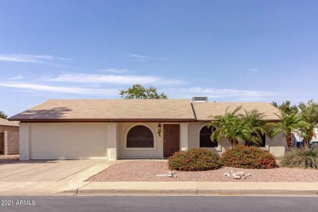 2862 E Dolphin Avenue, Mesa, AZ 85204 (MLS #6233827) :: Yost Realty Group at RE/MAX Casa Grande