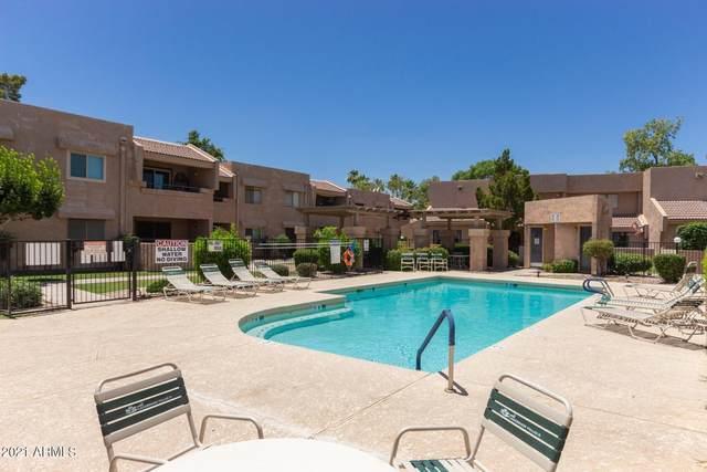 10828 N Biltmore Drive N #229, Phoenix, AZ 85029 (MLS #6233828) :: Yost Realty Group at RE/MAX Casa Grande