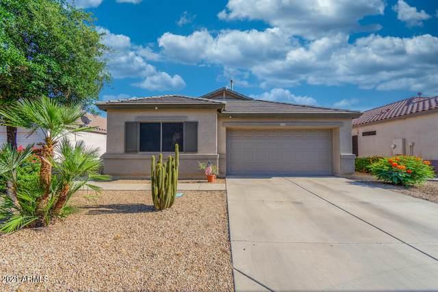 12913 W Sheridan Street, Avondale, AZ 85392 (MLS #6233835) :: Yost Realty Group at RE/MAX Casa Grande