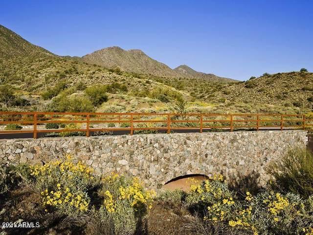 16020 N Ringtail Trail, Fountain Hills, AZ 85268 (MLS #6233843) :: Fred Delgado Real Estate Group
