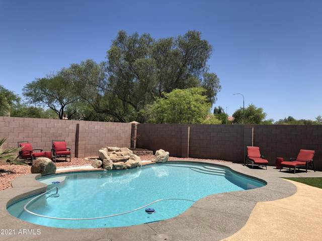 4740 E Mountain Vista Drive, Phoenix, AZ 85048 (MLS #6233846) :: Keller Williams Realty Phoenix