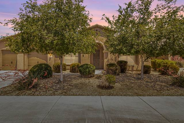 16146 W Pima Street, Goodyear, AZ 85338 (MLS #6233875) :: Hurtado Homes Group