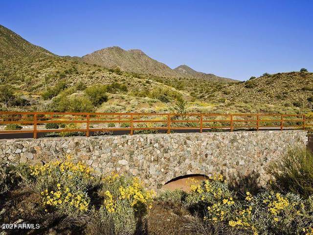14257 E Grey Owl Trail, Fountain Hills, AZ 85268 (MLS #6233877) :: CANAM Realty Group