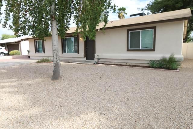 3325 E Helena Drive, Phoenix, AZ 85032 (MLS #6233891) :: Yost Realty Group at RE/MAX Casa Grande