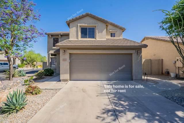 4416 E High Point Drive, Cave Creek, AZ 85331 (MLS #6233909) :: Yost Realty Group at RE/MAX Casa Grande