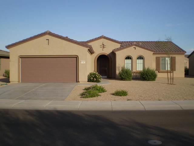 21567 N Black Bear Lodge Drive, Surprise, AZ 85387 (MLS #6233960) :: The Laughton Team