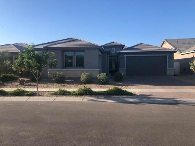 2520 E Nancy Lane, Phoenix, AZ 85042 (MLS #6233961) :: Yost Realty Group at RE/MAX Casa Grande