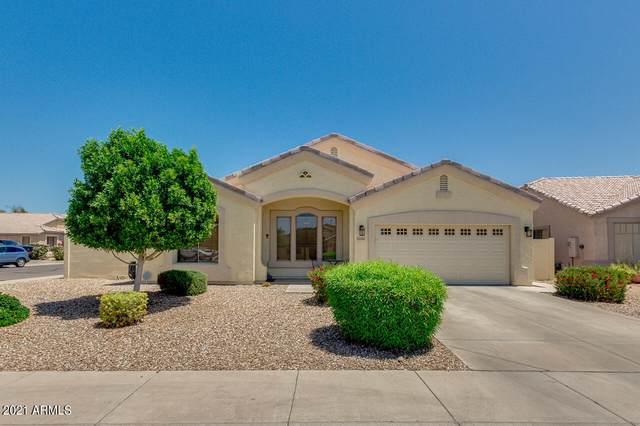 10867 W Davis Lane, Avondale, AZ 85323 (MLS #6234049) :: Service First Realty