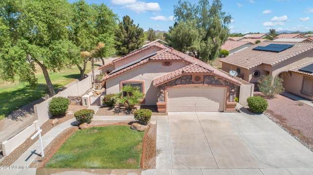 8854 W Salter Drive, Peoria, AZ 85382 (MLS #6234108) :: The Laughton Team