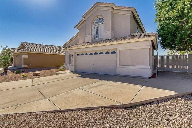 7115 E Jacob Avenue, Mesa, AZ 85209 (MLS #6234149) :: Arizona 1 Real Estate Team