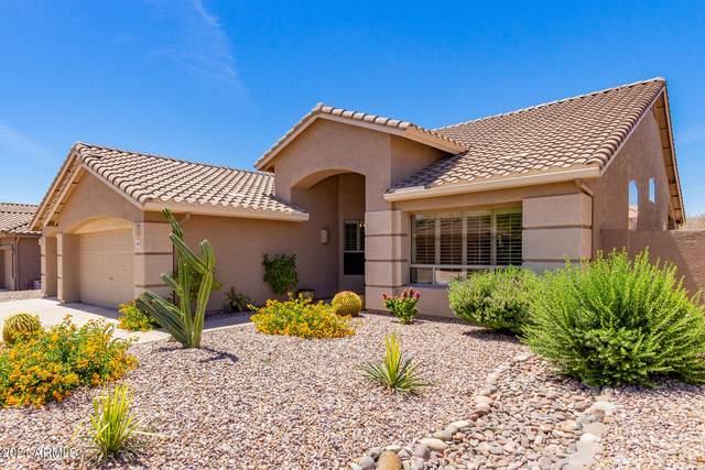 4922 E Duane Lane, Cave Creek, AZ 85331 (MLS #6234197) :: CANAM Realty Group