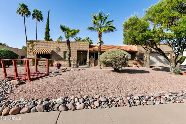 6430 E Sharon Drive, Scottsdale, AZ 85254 (MLS #6234216) :: Keller Williams Realty Phoenix