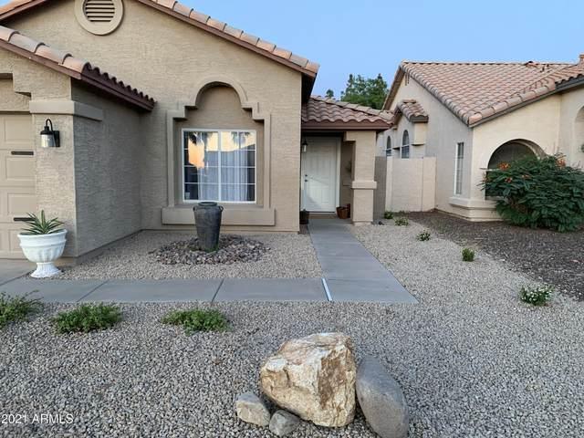 895 S Camellia Drive, Chandler, AZ 85225 (MLS #6234261) :: Yost Realty Group at RE/MAX Casa Grande