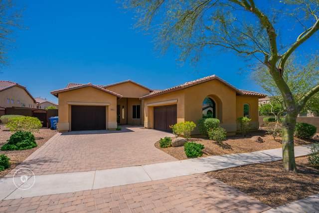 9014 S 15TH Way, Phoenix, AZ 85042 (MLS #6234279) :: Yost Realty Group at RE/MAX Casa Grande