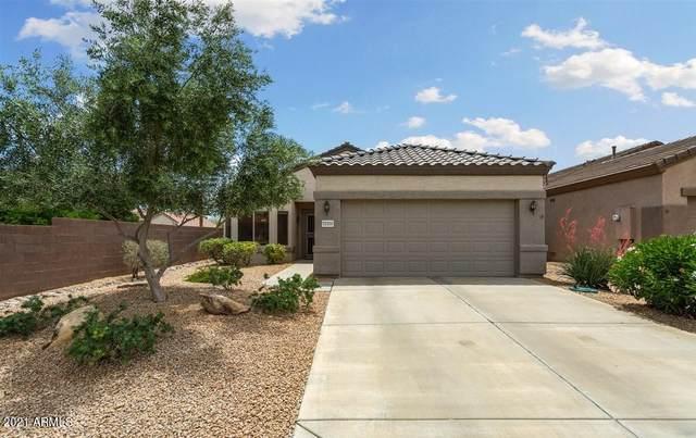 18406 N Borgata Drive, Surprise, AZ 85374 (MLS #6234280) :: TIBBS Realty