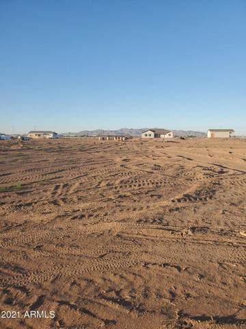 9312 S Watson Road, Buckeye, AZ 85326 (MLS #6234291) :: Long Realty West Valley