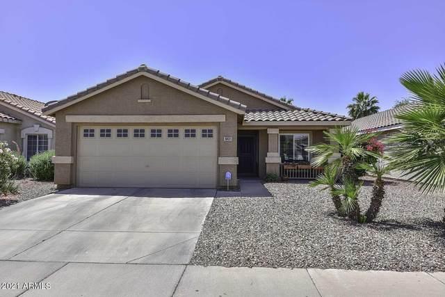 10431 W Medlock Drive, Glendale, AZ 85307 (MLS #6234373) :: neXGen Real Estate