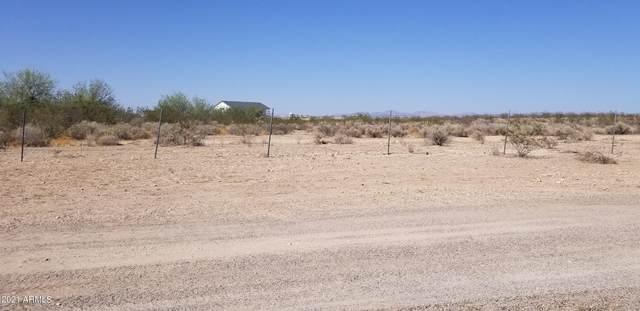 5101 S 355th Drive, Tonopah, AZ 85354 (MLS #6234374) :: CANAM Realty Group