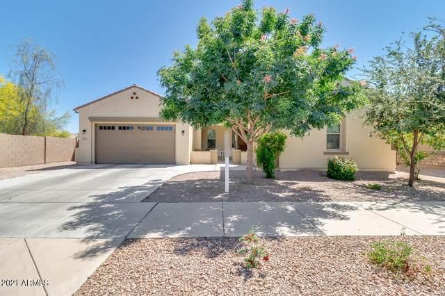 20965 E Camina Buena Vista, Queen Creek, AZ 85142 (MLS #6234381) :: Yost Realty Group at RE/MAX Casa Grande