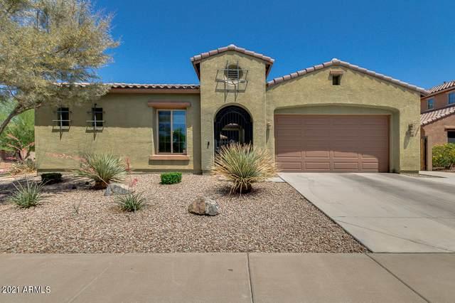 1634 E Mia Lane, Gilbert, AZ 85298 (MLS #6234386) :: Zolin Group
