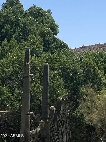 5245 E Rancho Manana, Cave Creek, AZ 85331 (MLS #6234406) :: The Dobbins Team