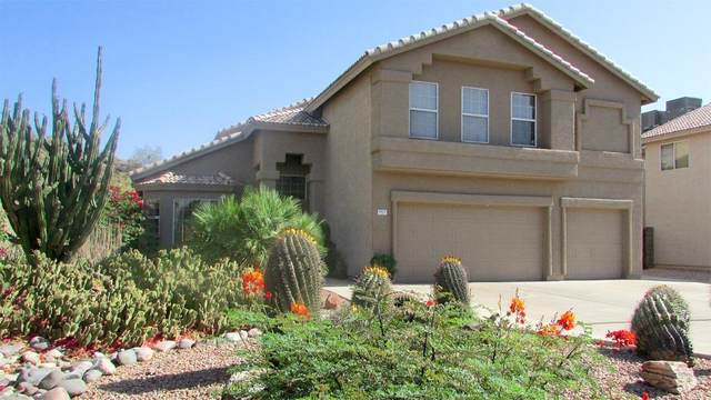 1825 N Raven Circle, Mesa, AZ 85207 (MLS #6234423) :: Howe Realty