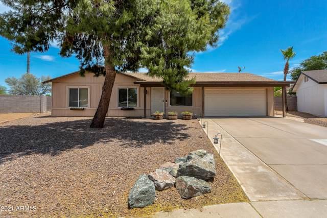 18433 N 30TH Street, Phoenix, AZ 85032 (MLS #6234460) :: Yost Realty Group at RE/MAX Casa Grande