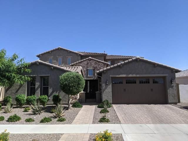 10449 E Sheffield Drive, Mesa, AZ 85212 (MLS #6234509) :: The Property Partners at eXp Realty