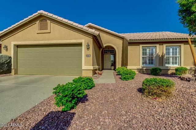 4007 N 151ST Lane, Goodyear, AZ 85395 (MLS #6234531) :: Long Realty West Valley