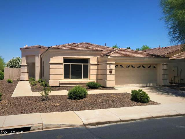 2102 E Fawn Drive, Phoenix, AZ 85042 (MLS #6234541) :: Long Realty West Valley
