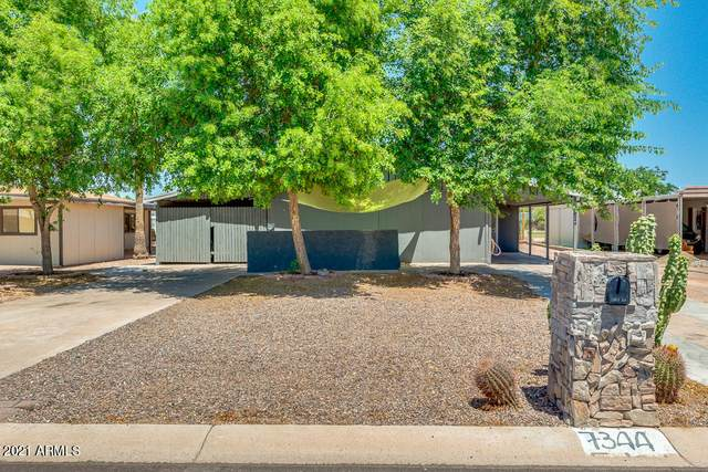 7344 E Jan Avenue, Mesa, AZ 85209 (MLS #6234549) :: Executive Realty Advisors