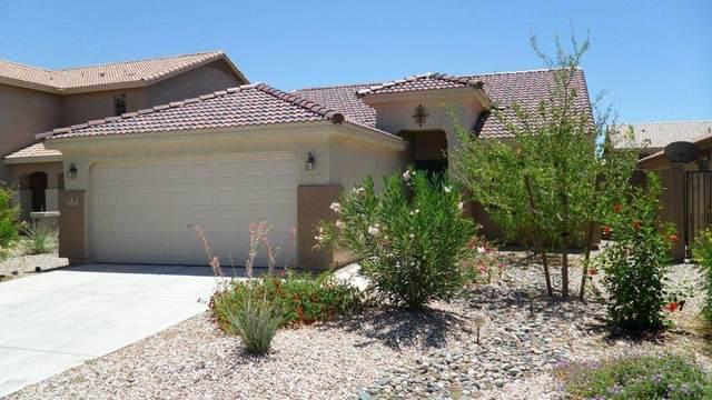 23853 W Mesquite Drive, Buckeye, AZ 85396 (MLS #6234556) :: The Riddle Group