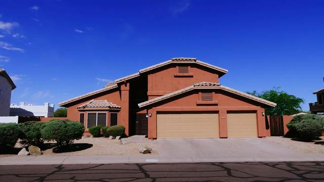 30608 N 45TH Place, Cave Creek, AZ 85331 (MLS #6234567) :: The Dobbins Team
