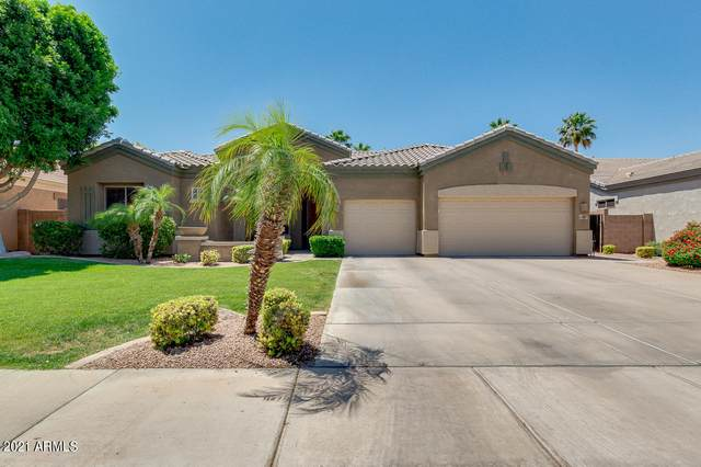 1843 E Winchester Place, Chandler, AZ 85286 (MLS #6234571) :: Openshaw Real Estate Group in partnership with The Jesse Herfel Real Estate Group