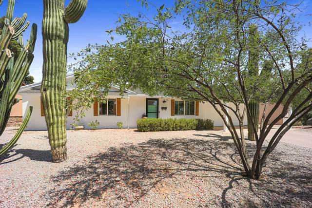 13647 N 37TH Place, Phoenix, AZ 85032 (MLS #6234592) :: Yost Realty Group at RE/MAX Casa Grande