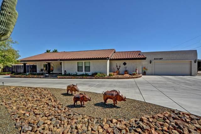 2027 E Rose Garden Lane, Phoenix, AZ 85024 (MLS #6234595) :: Elite Home Advisors