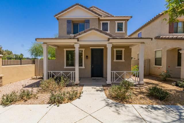 126 E Catclaw Street, Gilbert, AZ 85296 (MLS #6234599) :: Keller Williams Realty Phoenix