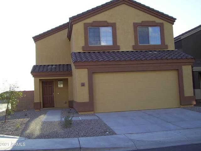 23668 N Desert Agave Street, Florence, AZ 85132 (MLS #6234638) :: The Laughton Team